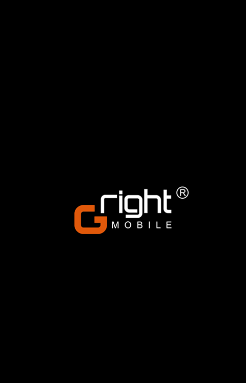Gright G400 Firmware Flash File